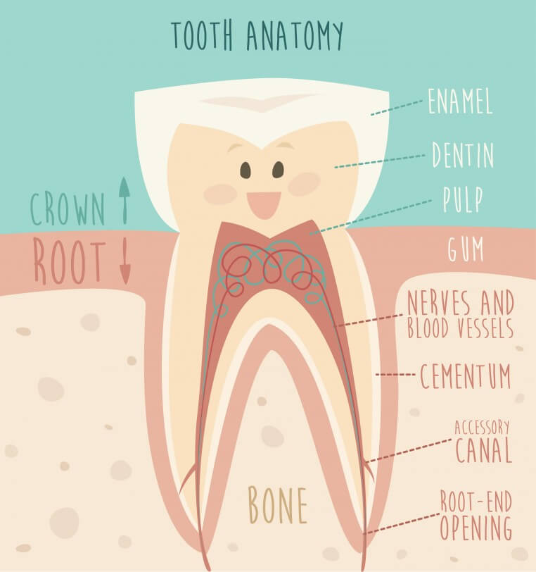 Getting a root canal over existing dental work - Dr Chauvin